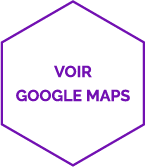 icône google maps
